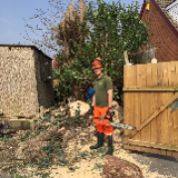 J PRICE LANDSCAPE GARDENING TREE SERVICES