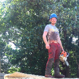 Foremans Tree Specialists