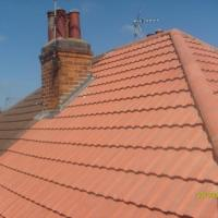 cardinals walk.