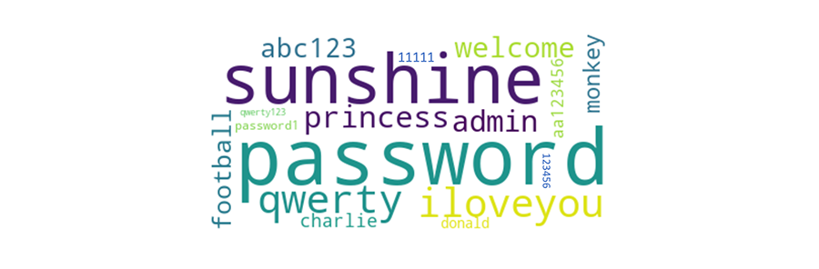 A wordcloud of common passwords