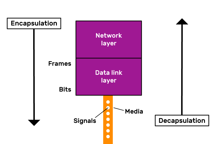 The Data Link layer in the TCP/IP model