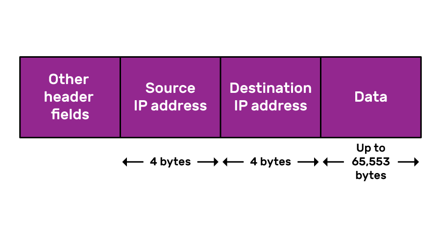 """A simplified IP packet, consisiting of """"Other header fields"""", a 4-byte long """"Source IP address"""", a 4-byte long """"Destination IP address"""", and up to 65,553 bytes of Data."""