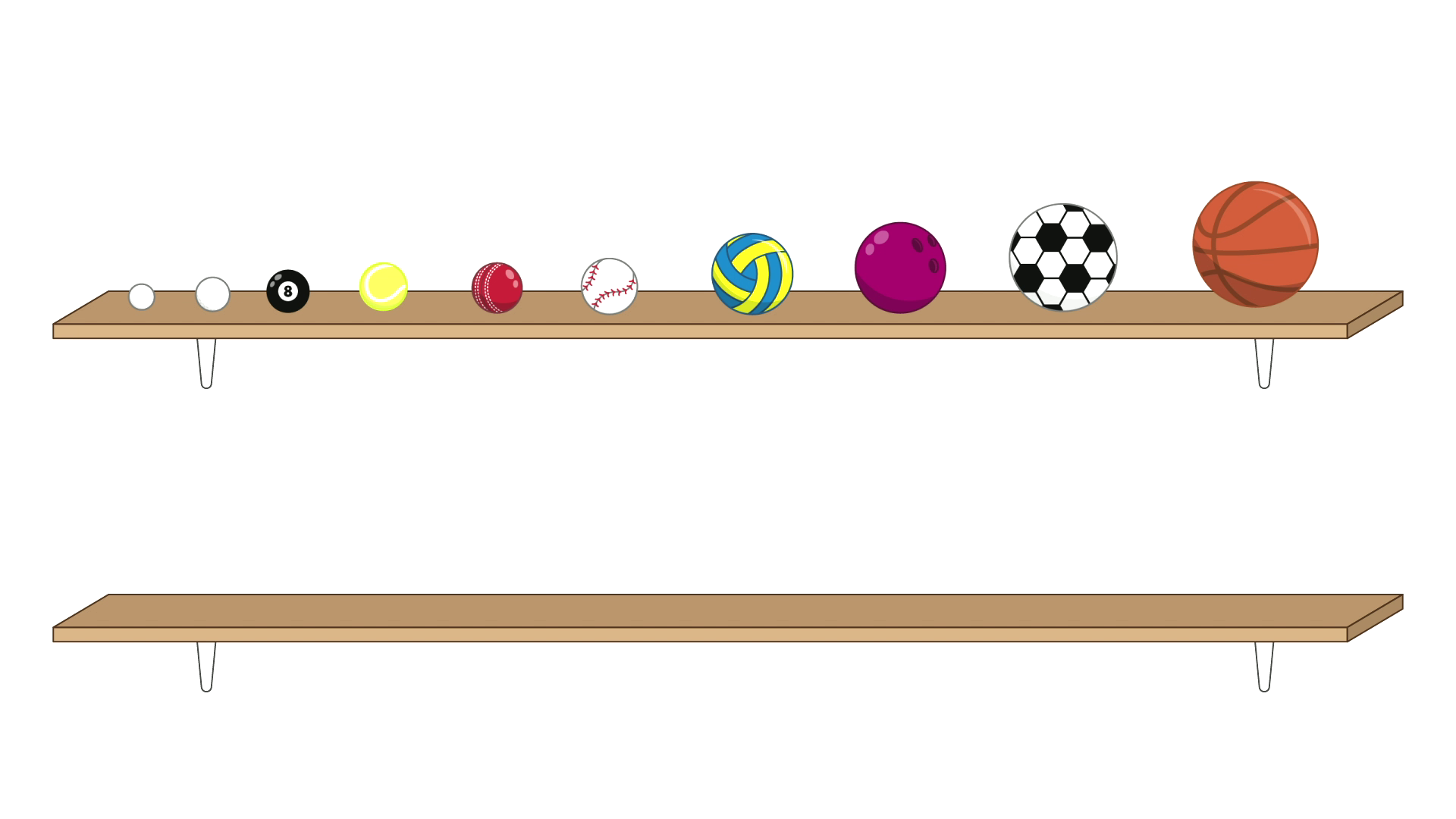 All 10 balls are on the top shelf, in size order. From left to right they are the ping-pong ball, the golf ball, the pool ball, the tennis ball, the cricket ball, the baseball, the netball, the bowling ball, the soccer ball and the basketball.