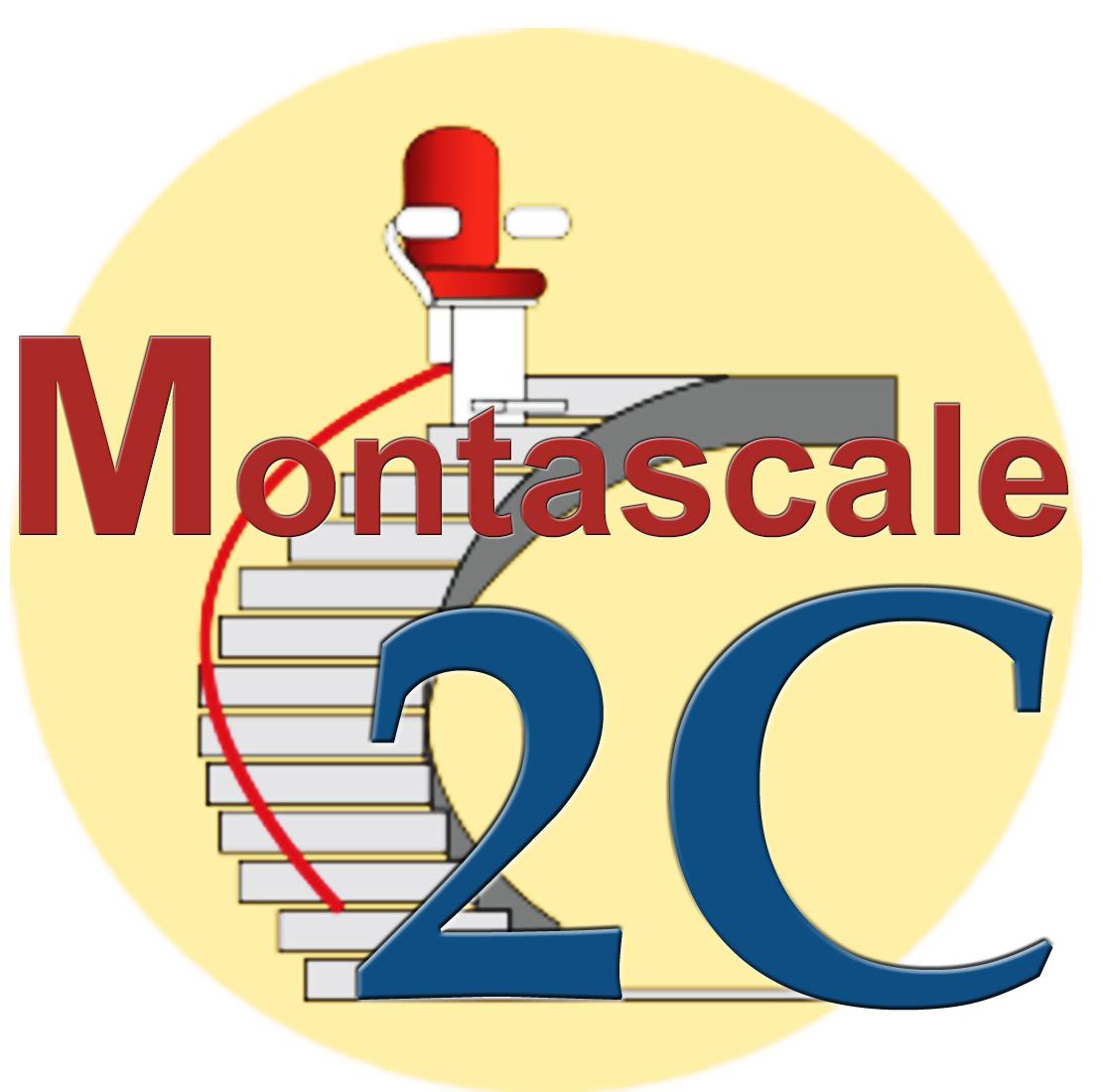 Logo Montascala2 C
