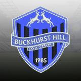 Buckhurst Hill FC