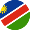 Namibia Rugby crest