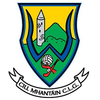 Wicklow Football crest