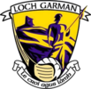 Wexford Football crest