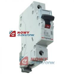 Bezpiecznik nadpr. 1P B 25A S301 szybki wyłącznik 605512