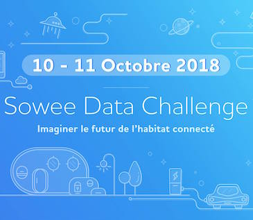 Sowee data challenge