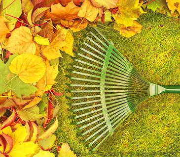 automne économies d'énergie