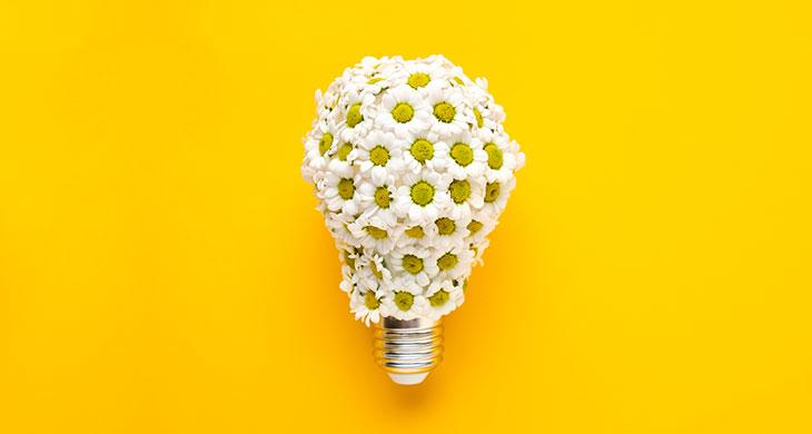 Printemps économies d'énergie