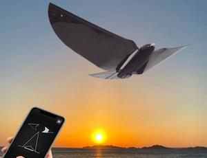 Drone MetaBird