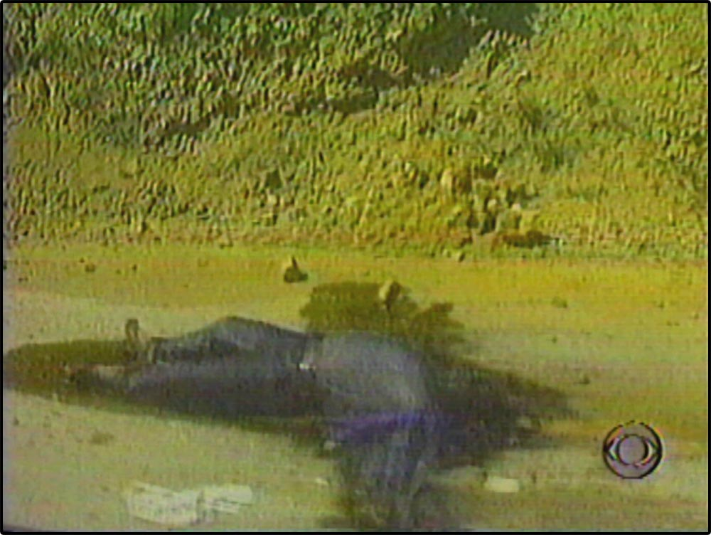 Figure 5.15 CBS's coverage of a Balkan War incident includes decaying corpses that are not shown in NBC's reporting of the same incident.