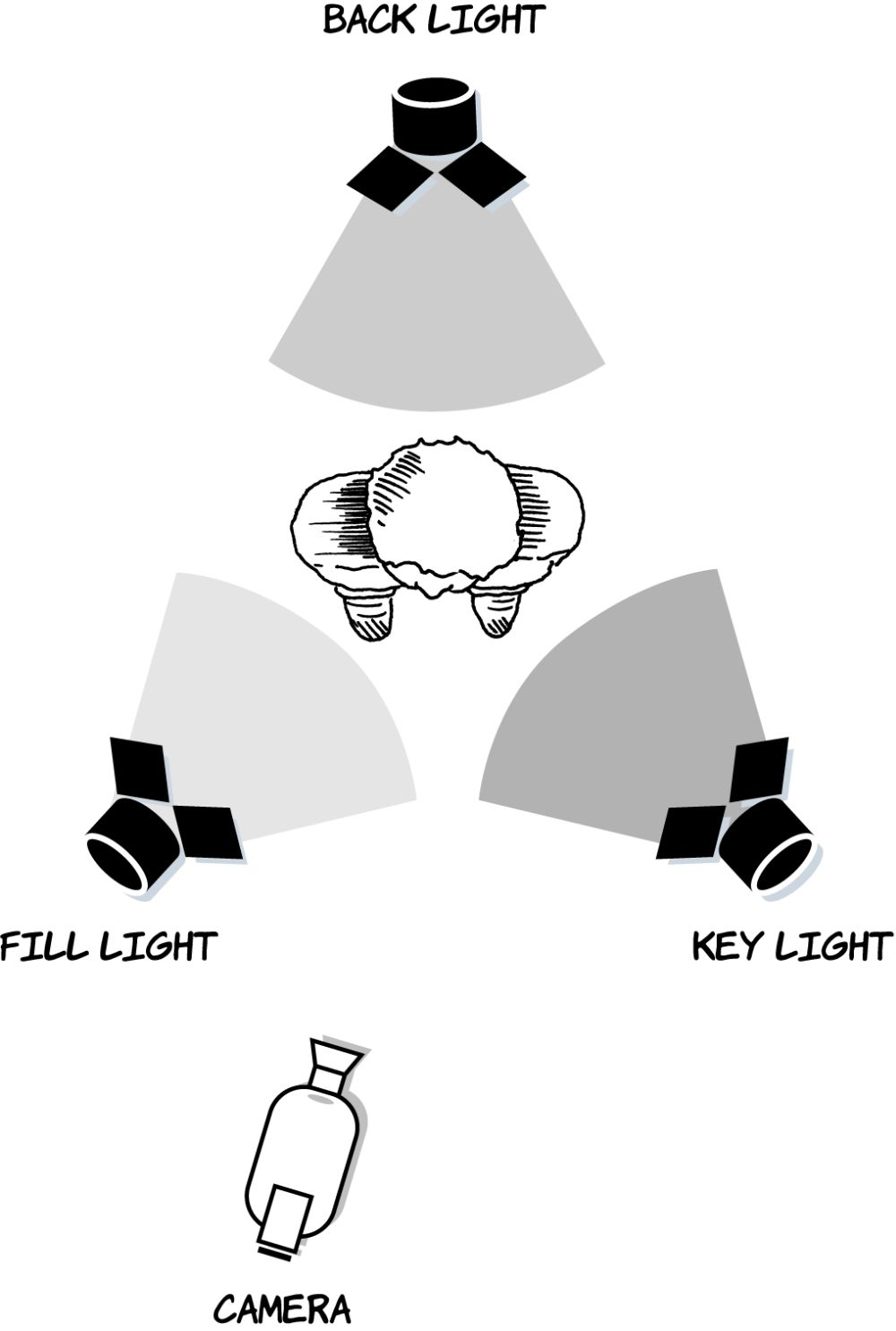 Figure 8.27Three-point lighting: key light, fill light, and back light.