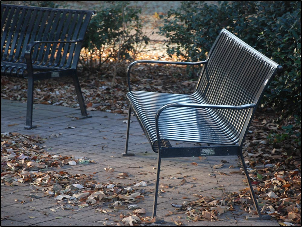 Figure 9.3 . . . as can be seen when contrasted with a telephoto shot of the same scene. Now the armrests appear closer together.