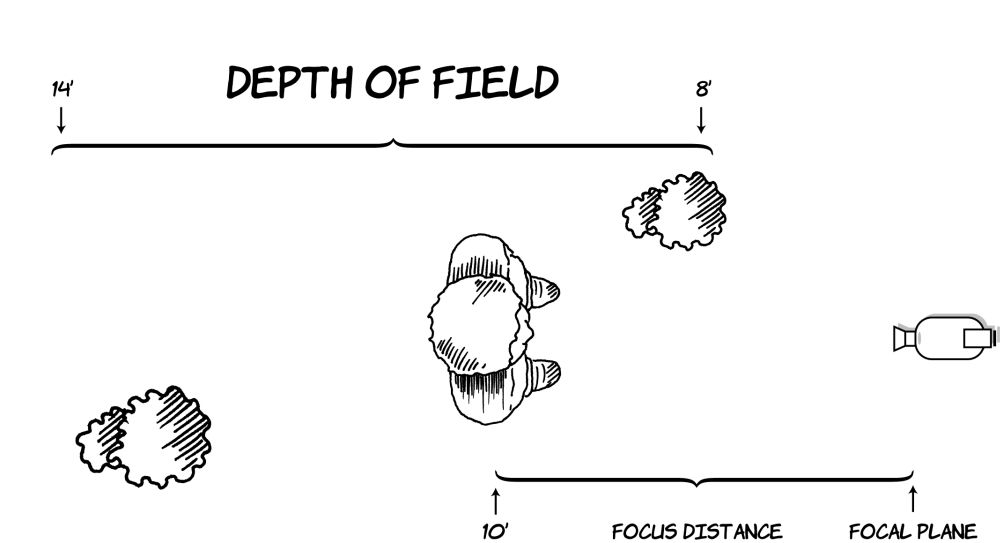 Figure 9.9 Depth of field is the range in front of and behind the distance at which the lens is focused. In this diagram, the focus is set at 10 feet, and the depth of field extends from 8 to 14 feet.