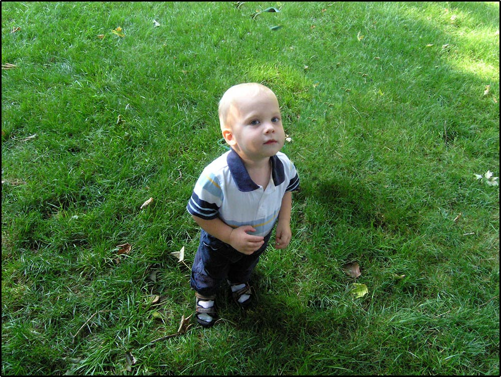 Figure 13.5 A boy stands on the grass in a suburban backyard.