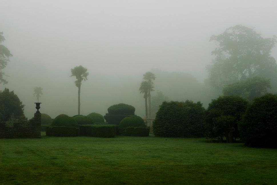 The Irish garden in fall