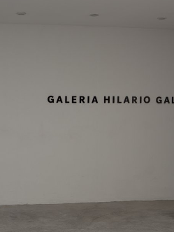 GALERIA-HILARIO-GALGUERA-Mexico
