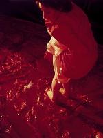Helnwein-schockt-mit-Blutbad