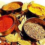 Indian Restaurants in Manchester