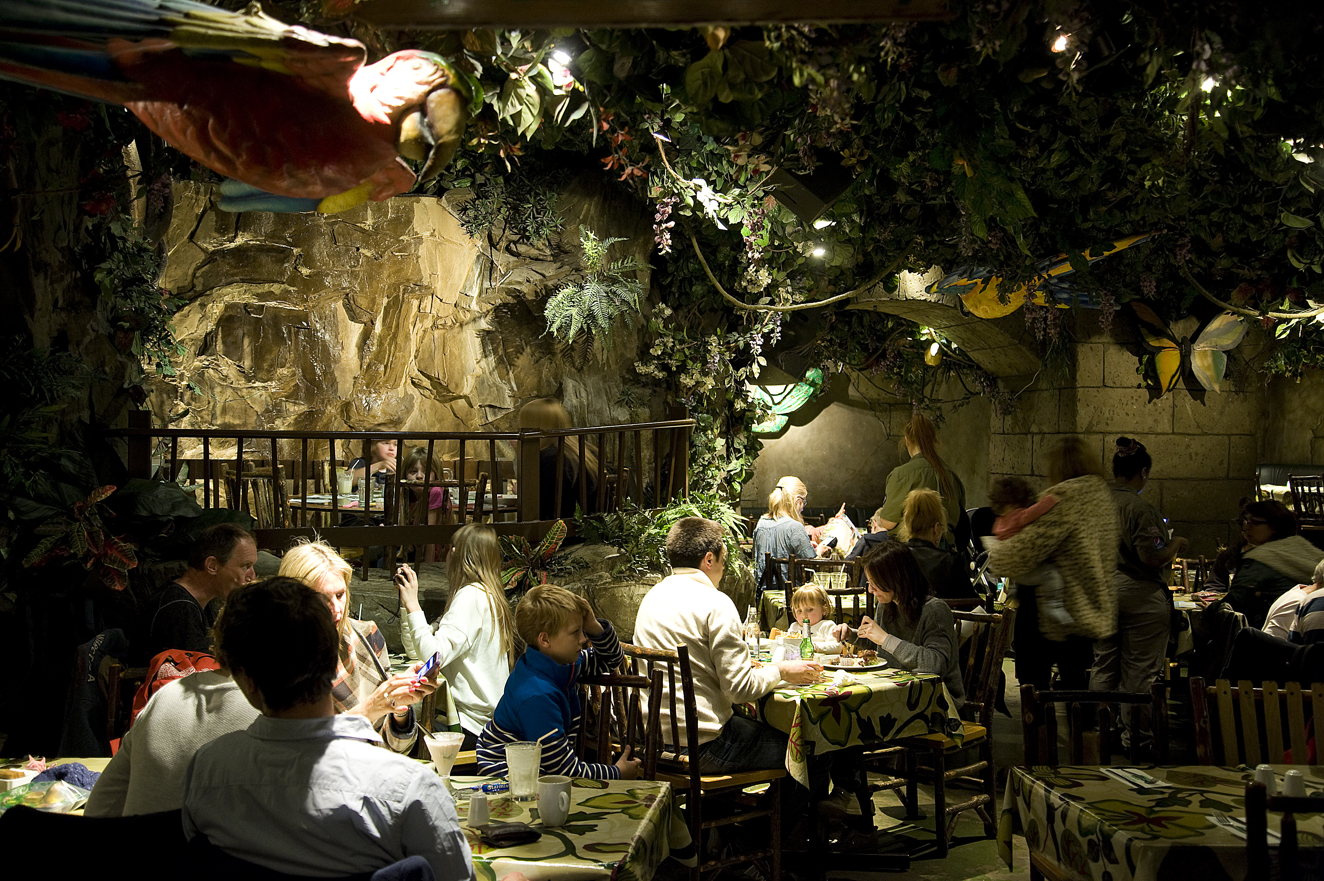 a corporate report on rainforest cafe inc Company overview rainforest cafe is a restaurant chain business that is owned and operated by landry's restaurants, inc rainforest cafe was founded by steven schussler with its first restaurant opening in bloomington, minnesota in 1994.
