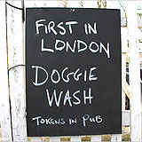 Pubs Where Dogs are Welcome