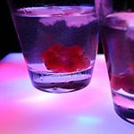 Cool Bars in Brighton