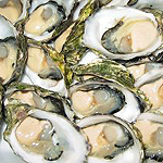 Oyster Bars in London