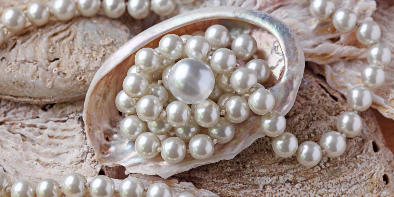 Perlen und Perlenkette in einer Muschel