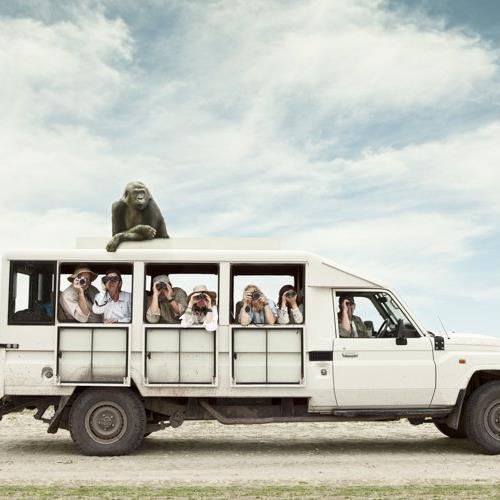 Fotoğraflarına Mizah Ve Yaratıcılık Katan Bir Fotoğrafçı: Zack Seckler