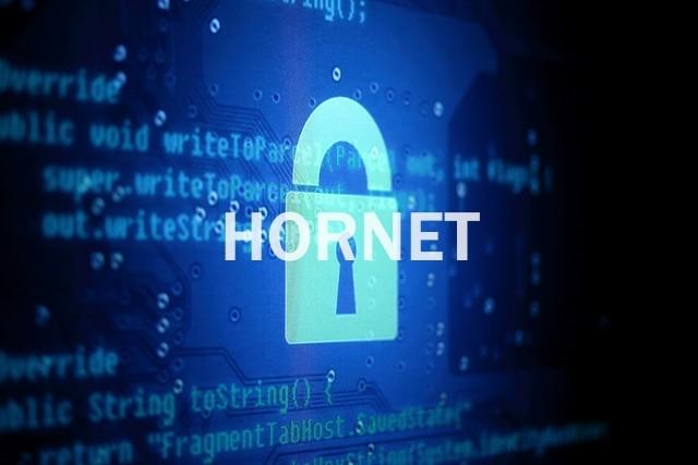 HORNET, une alternative plus rapide à TOR