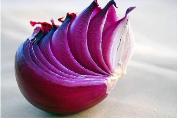 Des chercheurs du MIT démontrent une faille du réseau Tor
