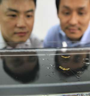 Des insectes-robots qui peuvent sauter sur l'eau
