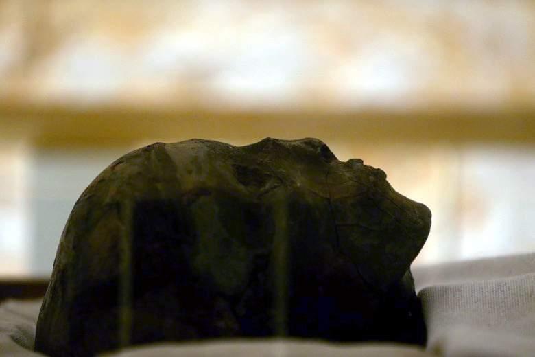 La tombe du roi Toutankhamon pourrait abriter la tombe de la reine Néfertiti