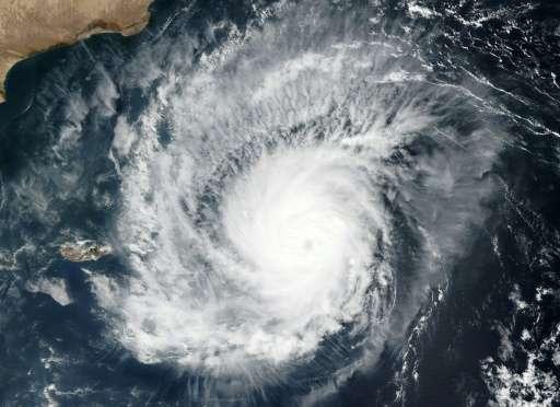 Yémen : le cyclone Megh dévaste l'île de Socotra