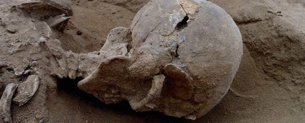 Les humains se massacrent depuis 10 000 ans