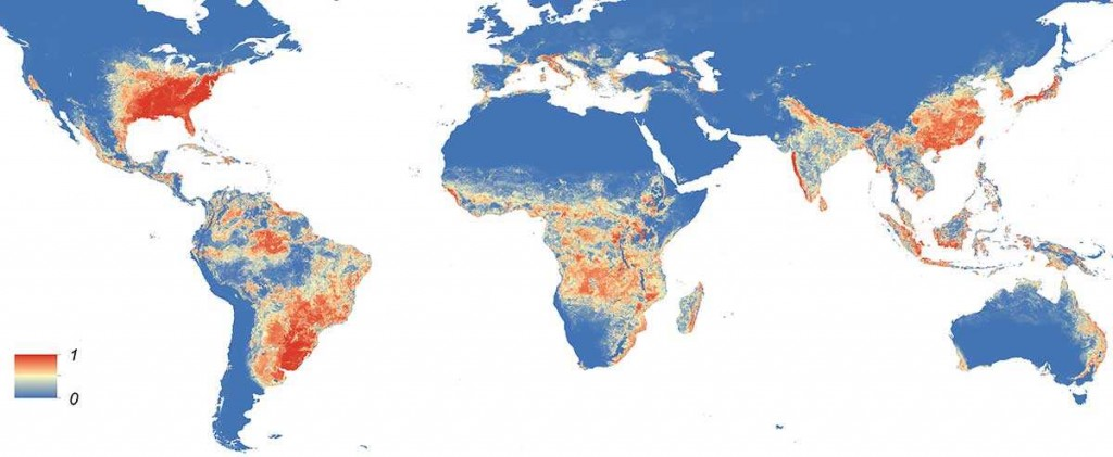 Une carte qui montre la distribution globale du moustique Aedes Albopictus qui pourrait transmettre le virus Zika (moustique présent principalement dans les pays tempérés).