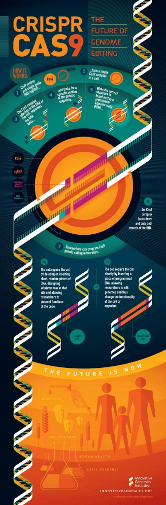 Une infographie pour comprendre les possibilités de modification génétique avec la technique CRISPR-Cas9