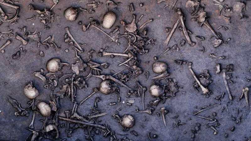 La guerre de Tollense, une bataille colossale pendant l'âge de Bronze