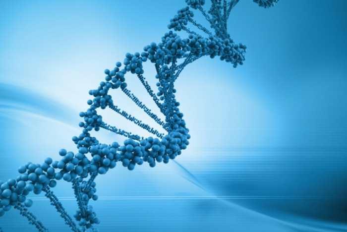 Votre perte de virginité est-elle liée à vos gènes ?