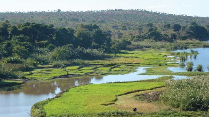 La première colonisation de Madagascar dévoile progressivement ses mystères. L'origine austronésienne est de plus en plus confirmée.