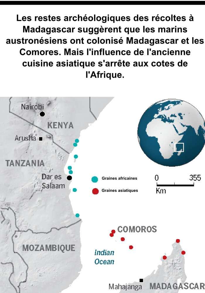 Le type de récolte était différente en Afrique par rapport à Madagascar et les Comores. Cela suggère des peuples totalement différents qui ont colonisé la Grande Ile et les Comores.