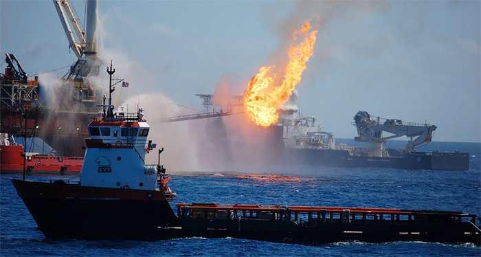 Un blizzard de pollution a bombardé le plancher océanique du Golf du Mexique après l'explosion de la plateforme Deepwater Horizon.