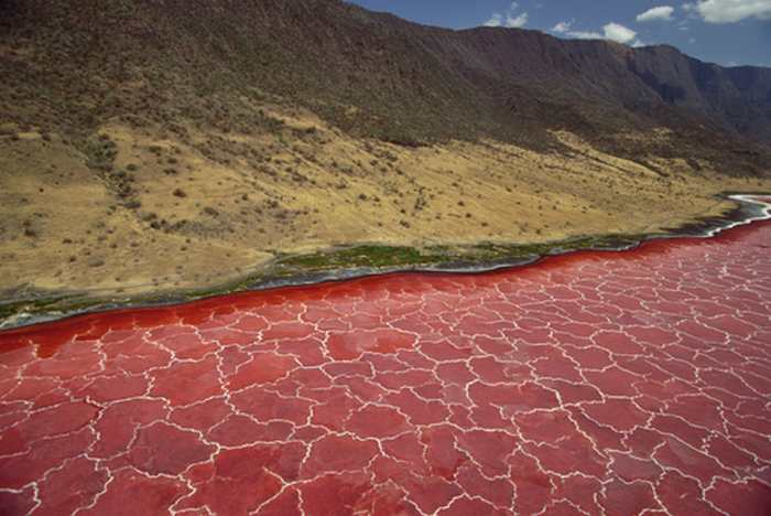 Découverte d'un gigantesque gisement d'hélium dans la vallée du Rift en Tanzanie
