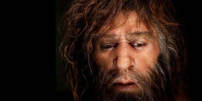 Les Néandertal européens étaient cannibales