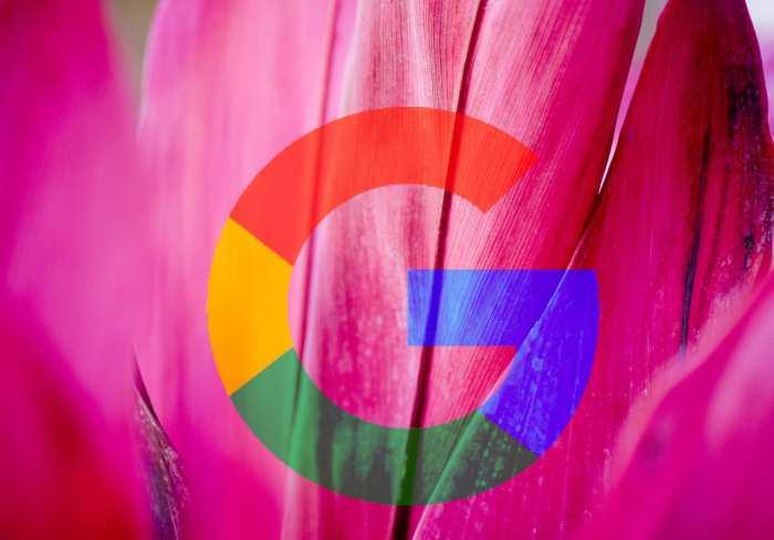 Le nouveau système d'exploitation Google Fuchsia pourrait servir dans de nombreux domaines allant de l'internet des objets, mais également sur le mobile et le Desktop.