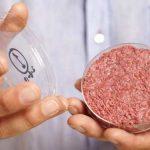 Les startups commencent à fabriquer de la nourriture in vitro, mais les gouvernements ignorent comment légiférer ces nouveaux types d'aliment.