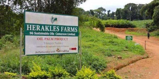 Accaparement de terres : l'administration américaine accusée d'avoir fait pression sur les autorités camerounaises
